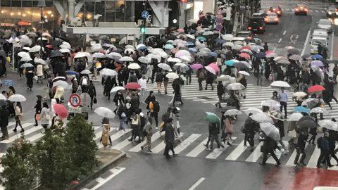 「窓の外は雨」を教えてくれるAI、オプティムが開発